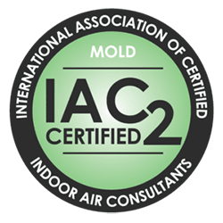 Mold Inspection Rockland County Home Inspection company